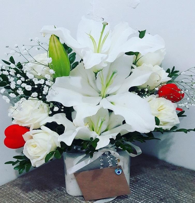 Beyaz Çiçek Küresi